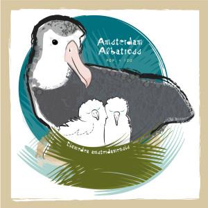 Zee_Albatross