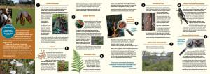 Mayne Island Conservancy 1